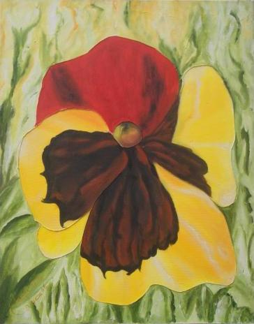 Flor de trinitaria